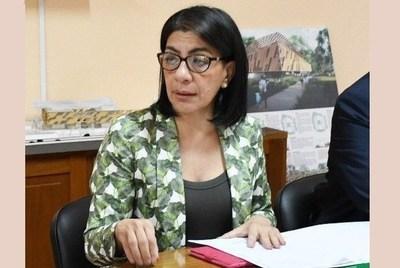 """Máquinas y otros recursos del Estado en estancia de gobernador, mientras el pueblo """"se cae"""", acusa diputada"""