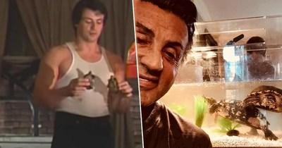 El actor de Rocky aún tiene a las tortuguitas del filme, que ya tienen 44 años