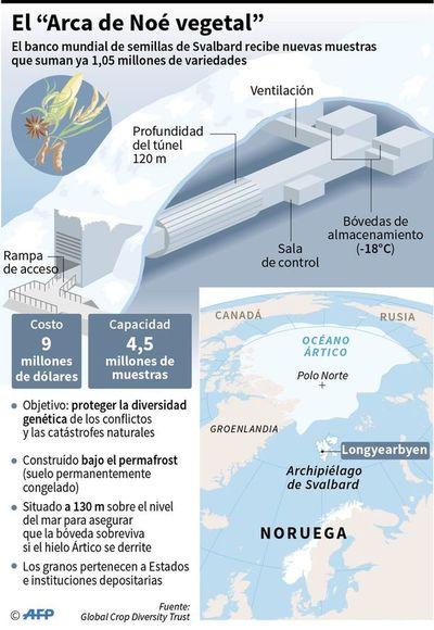 Arca de Noé vegetal supera millón de semillas almacenadas en el Ártico
