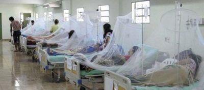 Ya son 104 los casos de dengue sólo en Santa Rosa Misiones