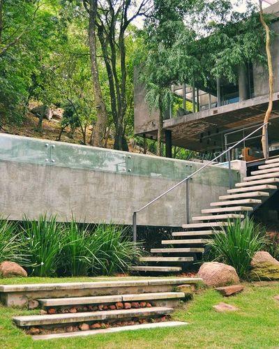 Una vivienda que se mezcla en la naturaleza
