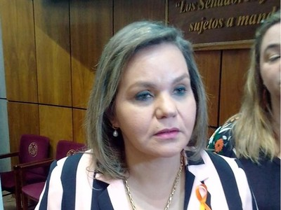 Senadora tildó de 'parche' a la ley de Financiamiento Político