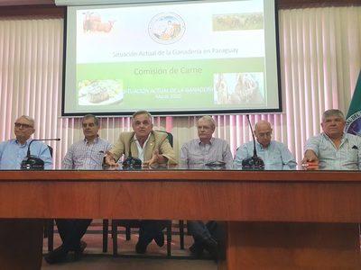 """Villasanti: """"Con un precio de US$ 2,70, la ganadería nacional se funde"""""""
