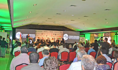 » X CONGRESO INTERNACIONAL: Debate y apuesta por sistemas silvopastoriles