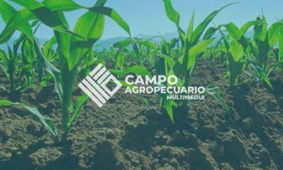 » El objetivo es cambiar la plataforma de la agricultura