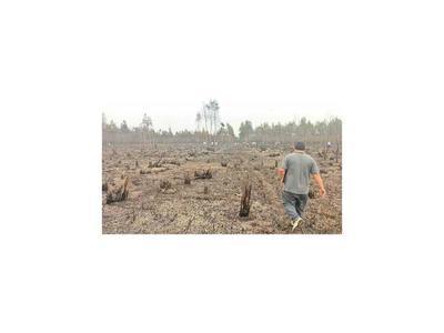 Incontrolable incendio forestal se cobra la vida de  bombero en Pilar
