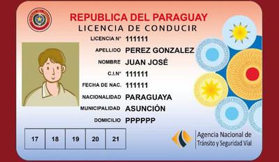 La Agencia Nacional de Tránsito solicita postergar vencimiento de licencias sin multas