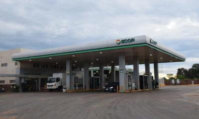 » Cooperativa Sommerfeld lanza nuevos diesel en sus estaciones de servicios