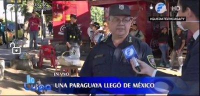 Alarma por paraguaya que llegó de México y fue hasta la Terminal
