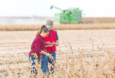 Lluvias traen alivio a productores