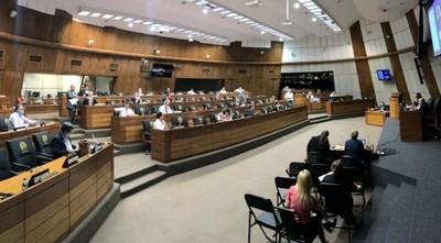 Tras maratónica sesión, Senado aprueba Ley de Emergencia: incluyen exoneración en pago de la ANDE