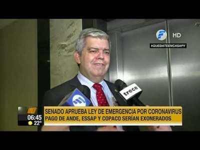 Senado aprobó exonerar pago de Ande, Essap y Copaco
