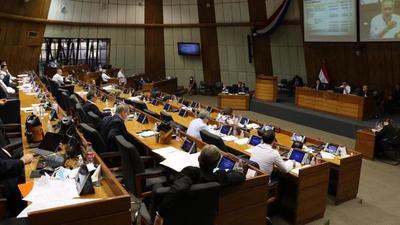 Senado aprueba ley para enfrentar crisis sanitaria y Cámara Baja se expide hoy