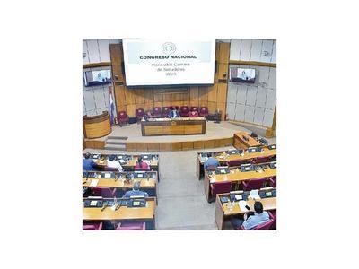 Senado integra comisión de control de ley de emergencia