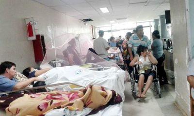 Gobierno da por cerrada la epidemia de dengue, que arrojó 53 muertes en 6 meses