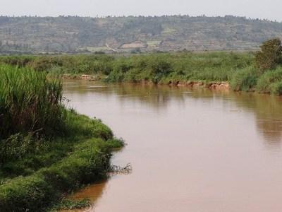África: Un hombre no respetó la cuarentera y terminó devorado por un cocodrilo