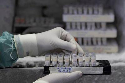 Coronavirus: Buscan implementar tratamiento con plasma sanguíneo