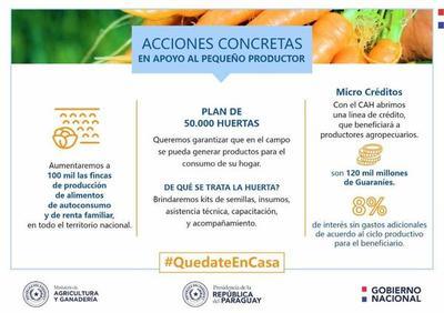 El MAG anuncia acciones concretas de apoyo a pequeños productores