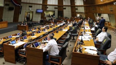 Este viernes se instalará la comisión bicameral para controlar recursos de la Ley de Emergencia