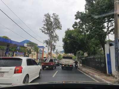 Coronavirus: Fiscalía pide a Gobierno recortar permisos de circulación