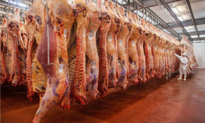 » Sigue repunte en envío de carne, pero advierten sobre una caída en abril