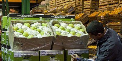 Países sudamericanos fijan pautas para avalar tránsito de alimentos