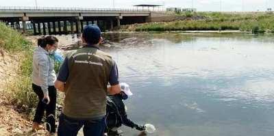 Aguas transparentes y peces en arroyos de Asunción y Central, otra cara de la cuarentena
