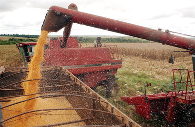 Brasil prevé una cosecha récord de granos en 2020 pese a la pandemia