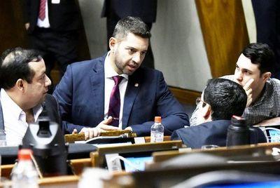 """Alliana: """"Por sentido común no se le puede expulsar a un legislador"""""""
