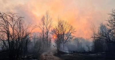 Incendios forestales en Chernóbil se van acercando a depósitos de la central nuclear