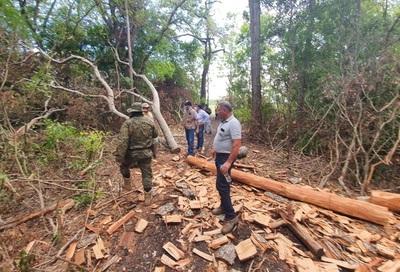 Ministro constata tala de árboles en Parque Nacional