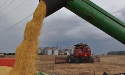 » Agroexportadores tendrán sobrecostos para envíos