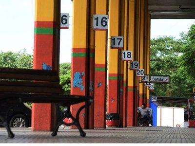 Dinatrán evaluará con Salud liberar servicios de corta distancia