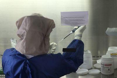 La OMS afirma que no hay pruebas de que personas infectadas con COVID-19 estén inmunizadas