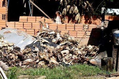 Mataderos contaminan cinco barrios
