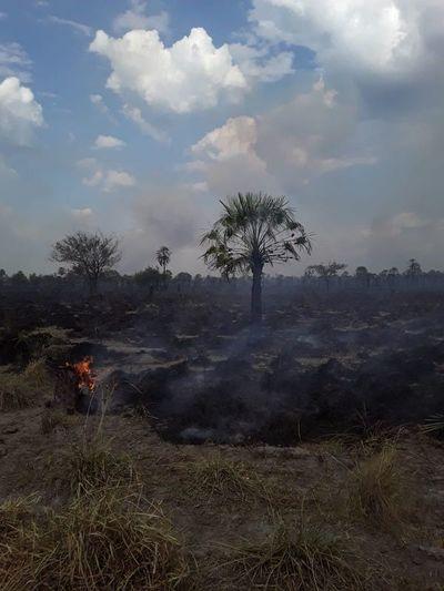 Quemazón de pastizales amenaza a estancias del Chaco