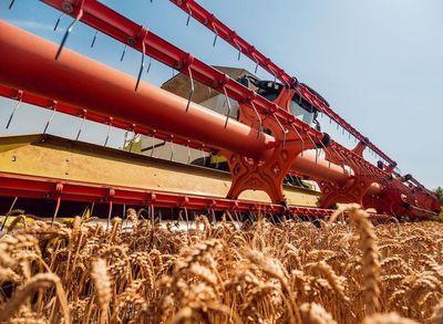 Rusia suspende las exportaciones de cereales