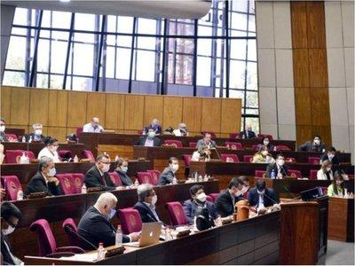 Petta es blanco de duras críticas en sesión de la Cámara de Diputados