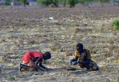 Un devastado Sudán del Sur ve esperanza en sus espacios naturales
