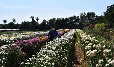 Piden que se prohíba  la  importación de flores