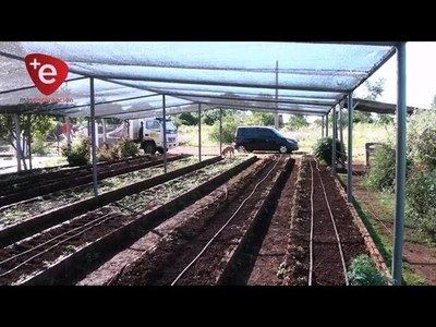 CAMBYRETÁ: MUNICIPIO REALIZA PREPARACIÓN DE SUELO Y PROMUEVE LA PRODUCCIÓN AGRÍCOLA