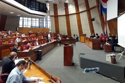 Diputados recurren a Juristas para definir recortes de privilegios en el sector público