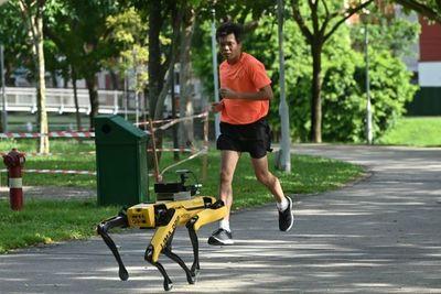 SPOT, el perro robot que controla a los habitantes de Singapur durante la cuarentena
