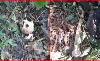 Reportan hallazgo de restos óseos en zona boscosa de Minga Guazú