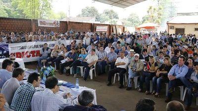Apoderados del PLRA piden a Alegre excluir del directorio a cuatro senadores
