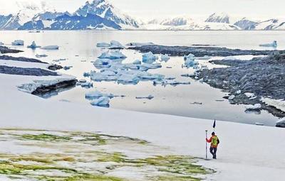 """Preocupa la aparición de """"nieve verde"""" en la Antártida"""