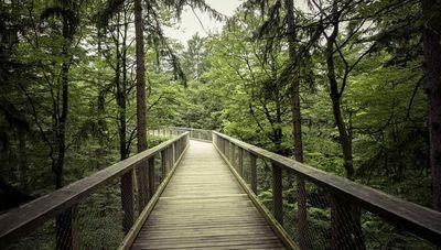 Parques Naturales: componentes esenciales para el turismo europeo que son reconocidos en mayo