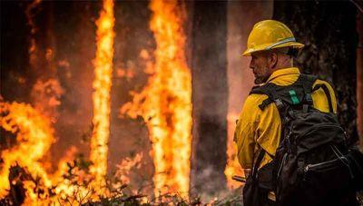Lanzaron boletín de alerta sobre incendios forestales