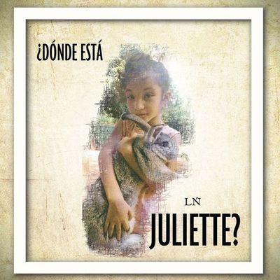 """Caso Juliette: temor de testigos a una """"mafia alemana"""""""