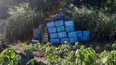 INCAUTAN 1,4 TONELADAS DE MARIHUANA EN INMEDIACIONES DE RESERVA MOROMBÍ